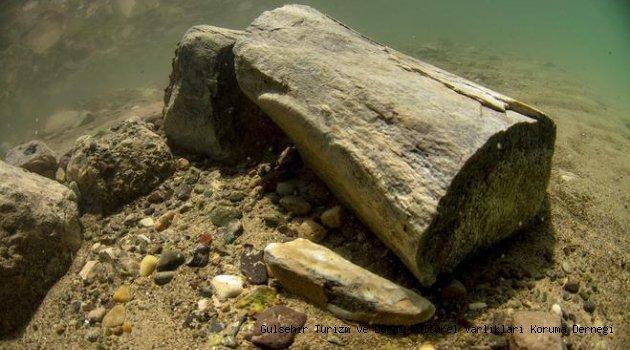 Yamula Barajında Fosil Çıktı
